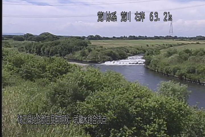 武蔵水路合流点画像