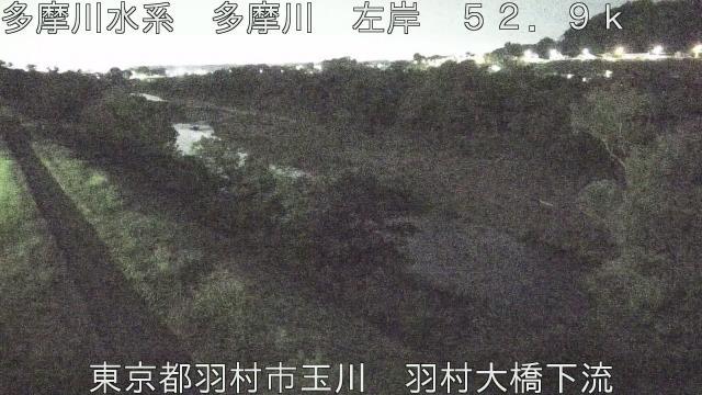 羽村大橋下流 現在の写真