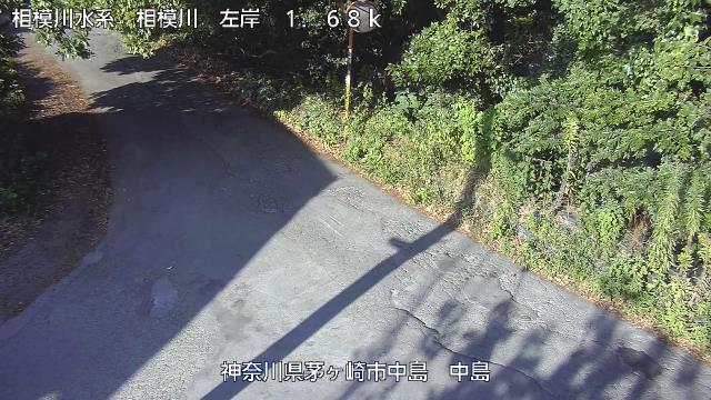 中島 現在の写真