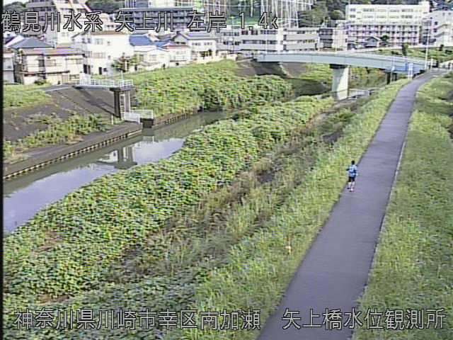 矢上橋水位観測所 現在の写真