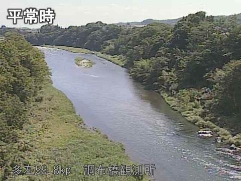 橋 カメラ 多摩川 ライブ 丸子