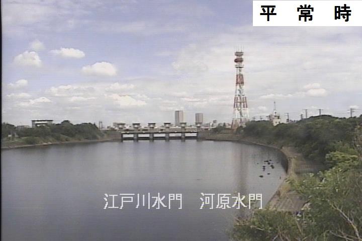 江戸川 ボート ライブ レース